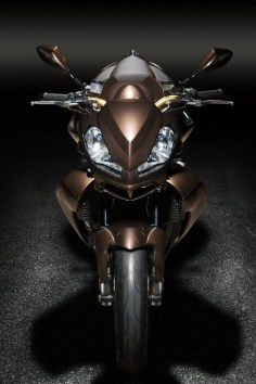 Aprilia Tuono Stingray by Vilner Custom - 13