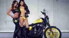 Harley Davidson Rockstar Energy 05