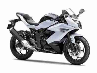 2014 Kawasaki Ninja RR Mono (Ninja 250SL)