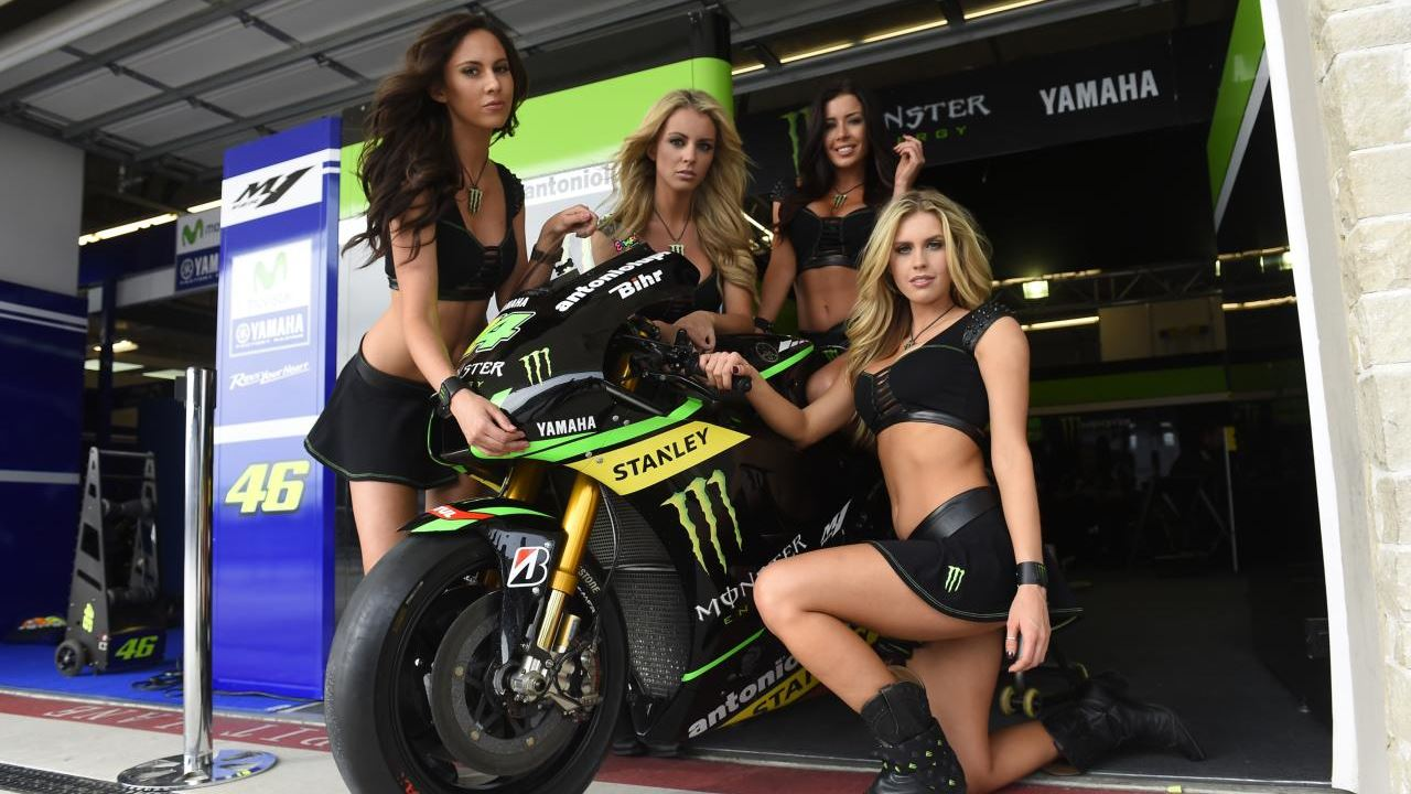Moster energy paddock girls - 3
