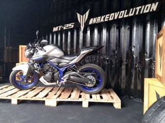 Yamaha MT 25 side view