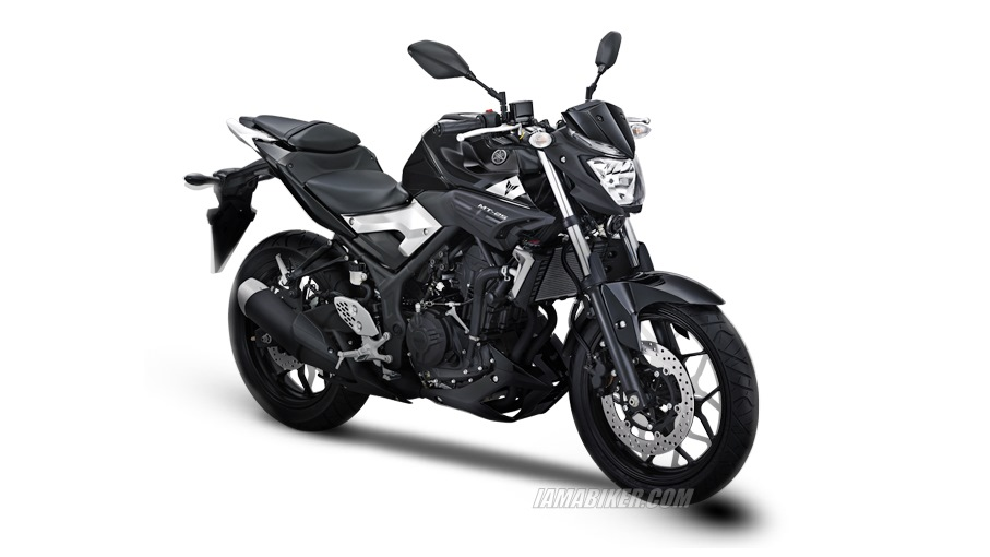 Yamaha MT 25 silver black option