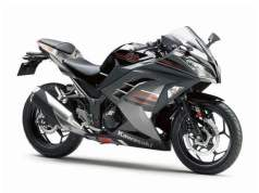 2019 Kawasaki Ninja 300 ABS Metallic Moon Dust Grey