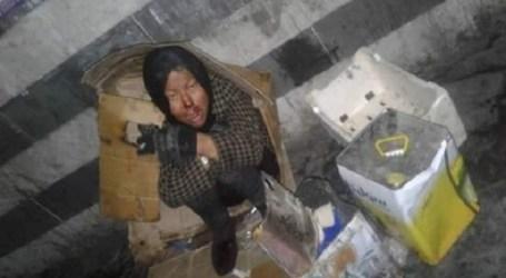 نساء الحرب السوريات يتلحفن الكرتون في أسواق دمشق