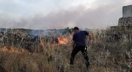 أهالي السويداء يطفئون الحرائق بأنفسهم والسلطات لا تستجيب لنداءاتهم (فيديو)