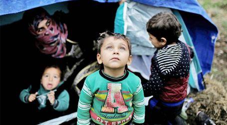 اليوم العالمي للاجئين.. السوريون يواجهون المصاعب وحلم العودة لم يطفيء