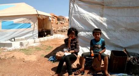 سوريا على رأس القائمة.. الأمم المتحدة تحذر من زيادة عدد الجياع في العالم