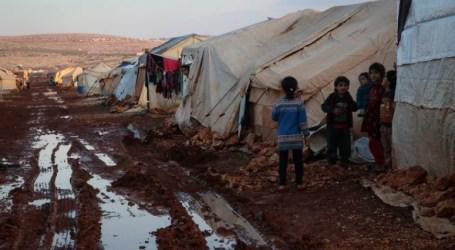 34 % من أطفال إدلب وريف حلب الغربي يعانون من التقزم