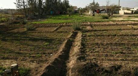 الفرقة الرابعة تؤجر الأراضي التي صادرتها في الغوطة الشرقية