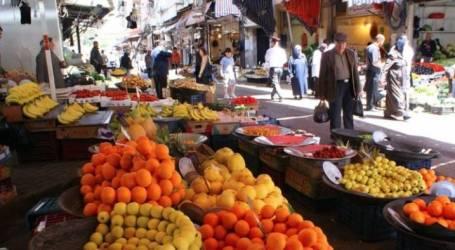 السلطة السورية: تصدير 200 طن يوميا من الحمضيات إلى العالم