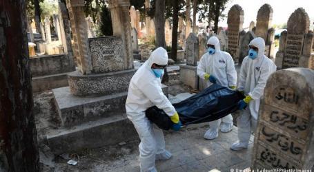 طبيب سوري: الطفرة الثالثة من كورونا سرعة انتشارها أكثر بـ 50 مرة من سابقاتها