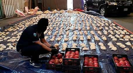 بعد الرمان.. شحنة مخدرات تصل السعودية قادمة من لبنان ضمن فاكهة جديدة