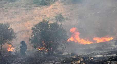 الحرائق تشتعل في سوريا من جنوبها لشمالها