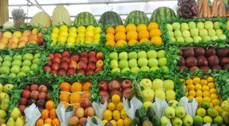 سوريا غارقة في الغلاء.. والسلطة تضاعف صادرات المنتجات الزراعية