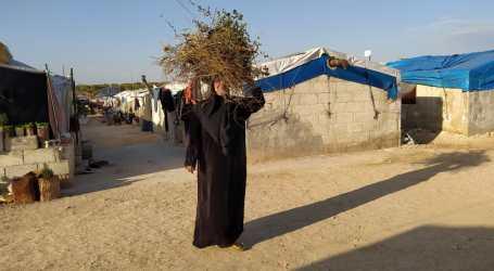 الشمال السوري… امرأة متزوجة من مقاتل أجنبي تروي مأساتها