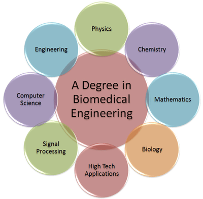 Why biomedical engineering is not very well known among