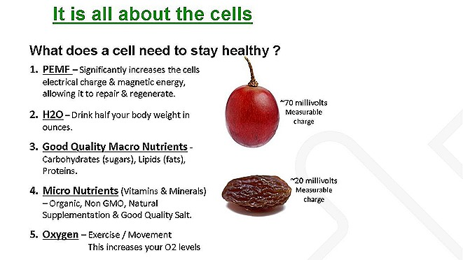 is all about cellsJPEG