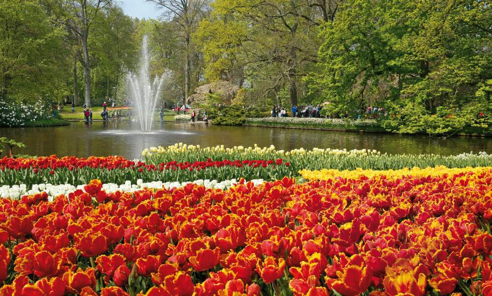 8 amazing attractions in the Netherlands if you love flowers and ...