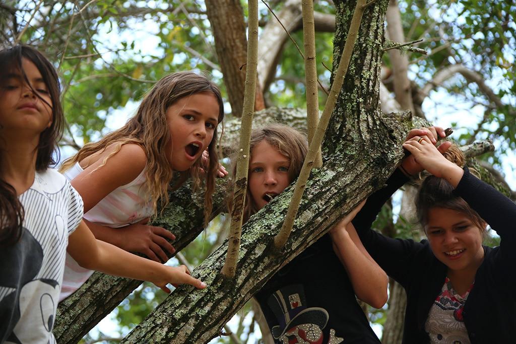 Camping-BalnearioBrasil-03