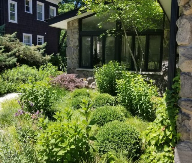 An Evanston Family Transforms A Poorly Defined Overgrown Front Yard Into A Seamless Extension Of Their Mid Century Modern Home