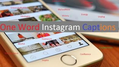 Photo of 499+ [Trending] One Word Instagram Captions