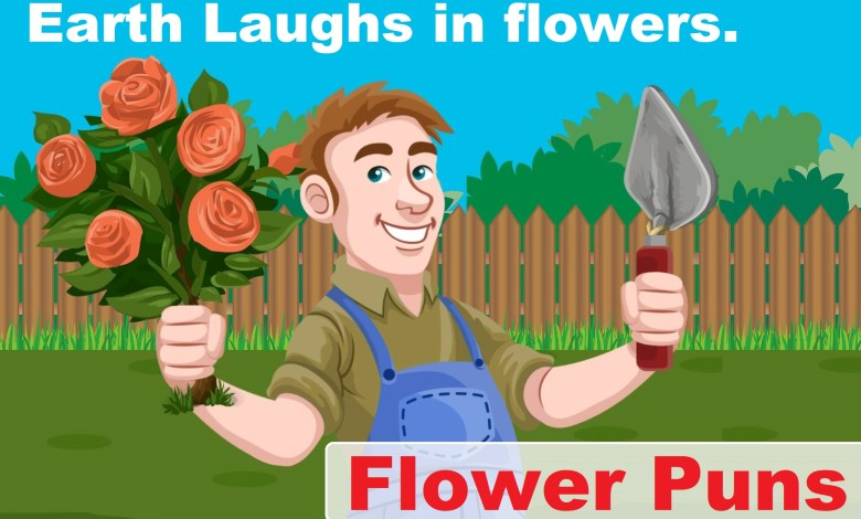 Photo of 80+ Flower Puns and Quotes Use With Your Instagram Post