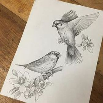 Bird - Step by Step Guide to Draw