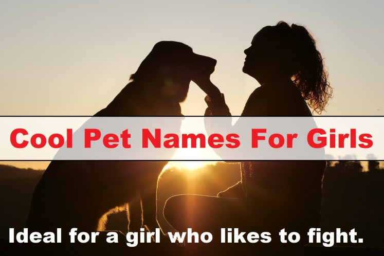 Cool Pet Names For Girls