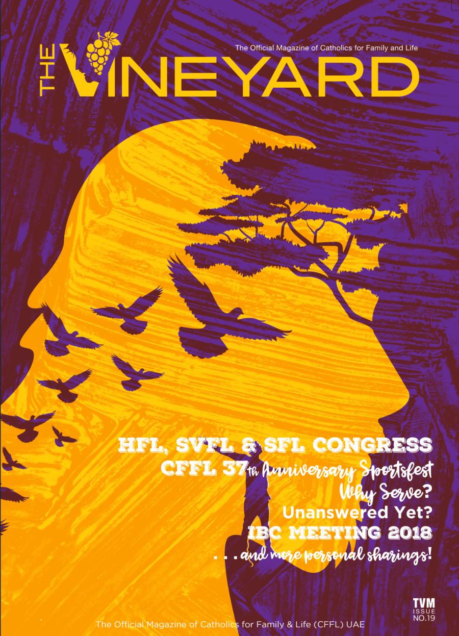 CFFL The Vineyard Magazine TVM19 cover - iamjmkayne.com