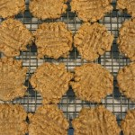 Four Ingredient Chewy Peanut Butter Cookies