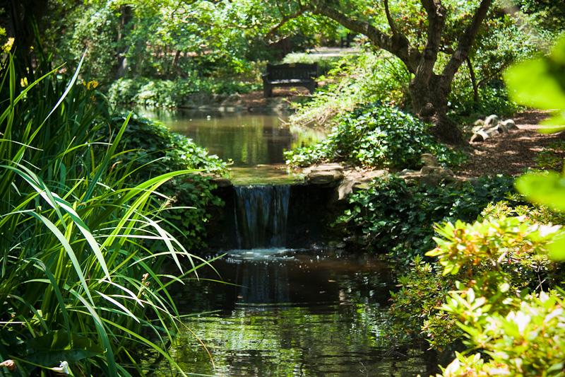 Descanso Gardens | IAMNOTASTALKER