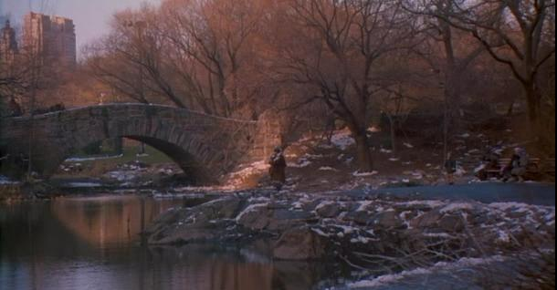Gapstow Bridge Home Alone