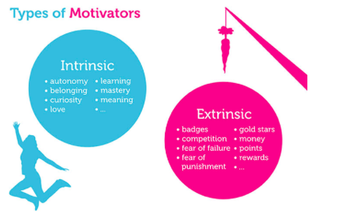 Types of Intrinsic and Extrinsic Motivators