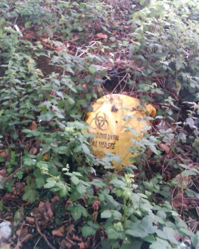 Clinical waste sack lost in undergrowth