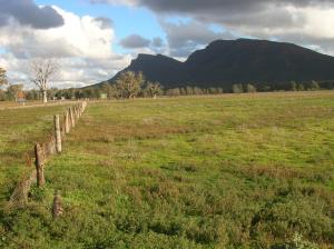 The Flinders Ranges…..greener than I have seen in 50 years due to recent rains (click to enlarge).