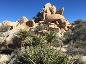 Jumble of boulders