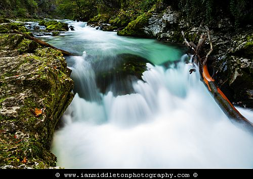 The Soteska Vintgar gorge, Gorje, near Bled, Slovenia. The 1.6 km long Vintgar gorge has been carved through the vertical rocks of the Hom and Bort hills by the Radovna River.