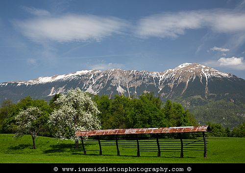 View of Mount Stol in spring from an area near Bled Lake, Slovenia.
