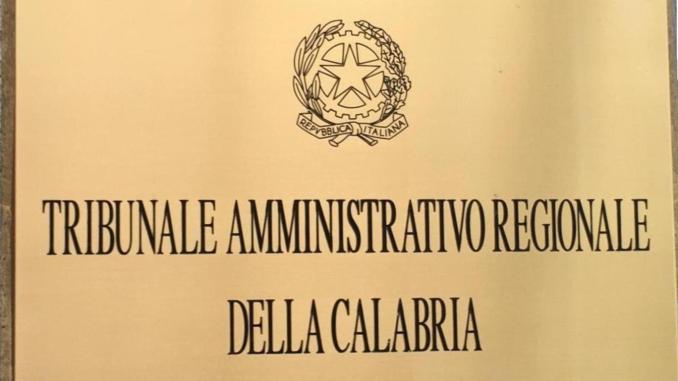 Pubblicazione della PEC nel registro PPAA