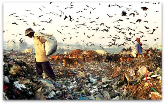 Solid Waste Management in India – Issues & Responses