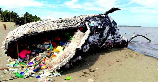 Plastic Pollution – The Great Threat to Environment & Ecosystem