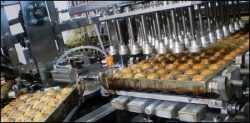 Food Processing Industry in India - Challenges & Initiatives