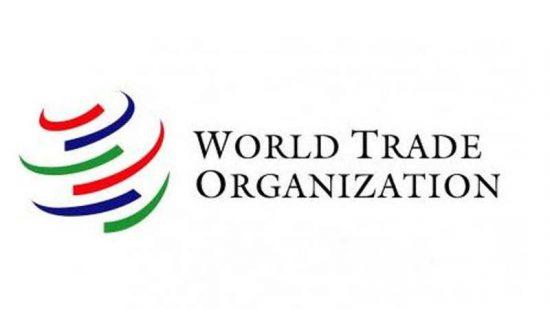WTO Dispute Settlement Mechanism Issue: Reasons & Implications upsc ias essay notes mindmap