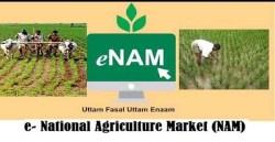 National Agriculture Market (e-NAM): Objectives, Working, Advantages, Challenges