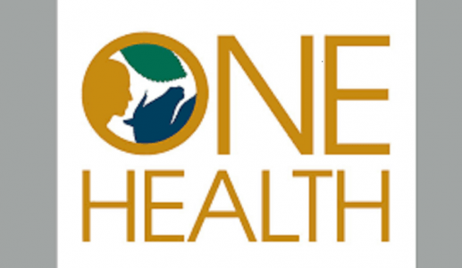 One Health Approach – Need, Opportunities, Challenges
