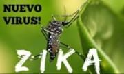 Zika Virus:- 6 ways the war on Zika mosquitoes could be won