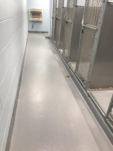 animal hospital flooring, boarding kennel flooring, pet hospital flooring, epoxy floor coatings