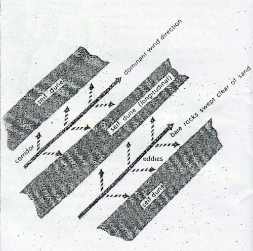(World Geography) Aeolian Processes & Landforms