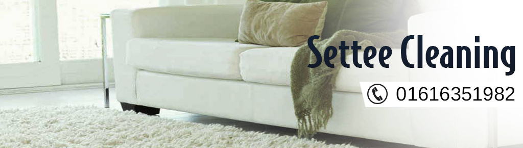 Settee Cleaning