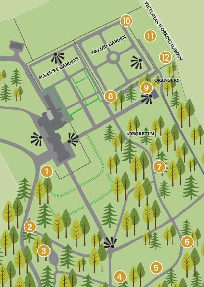 Fota Pollinator Trail Map